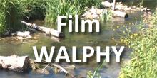 Film Walphy